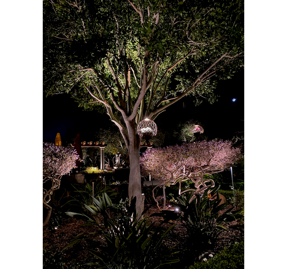 A picture of luxury landscape lighting done correctly