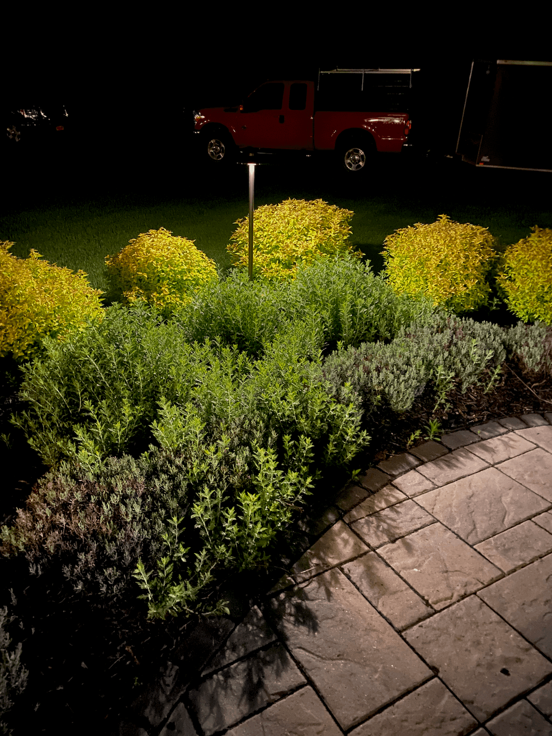 A garden in Schenectady Ny with landscape lights
