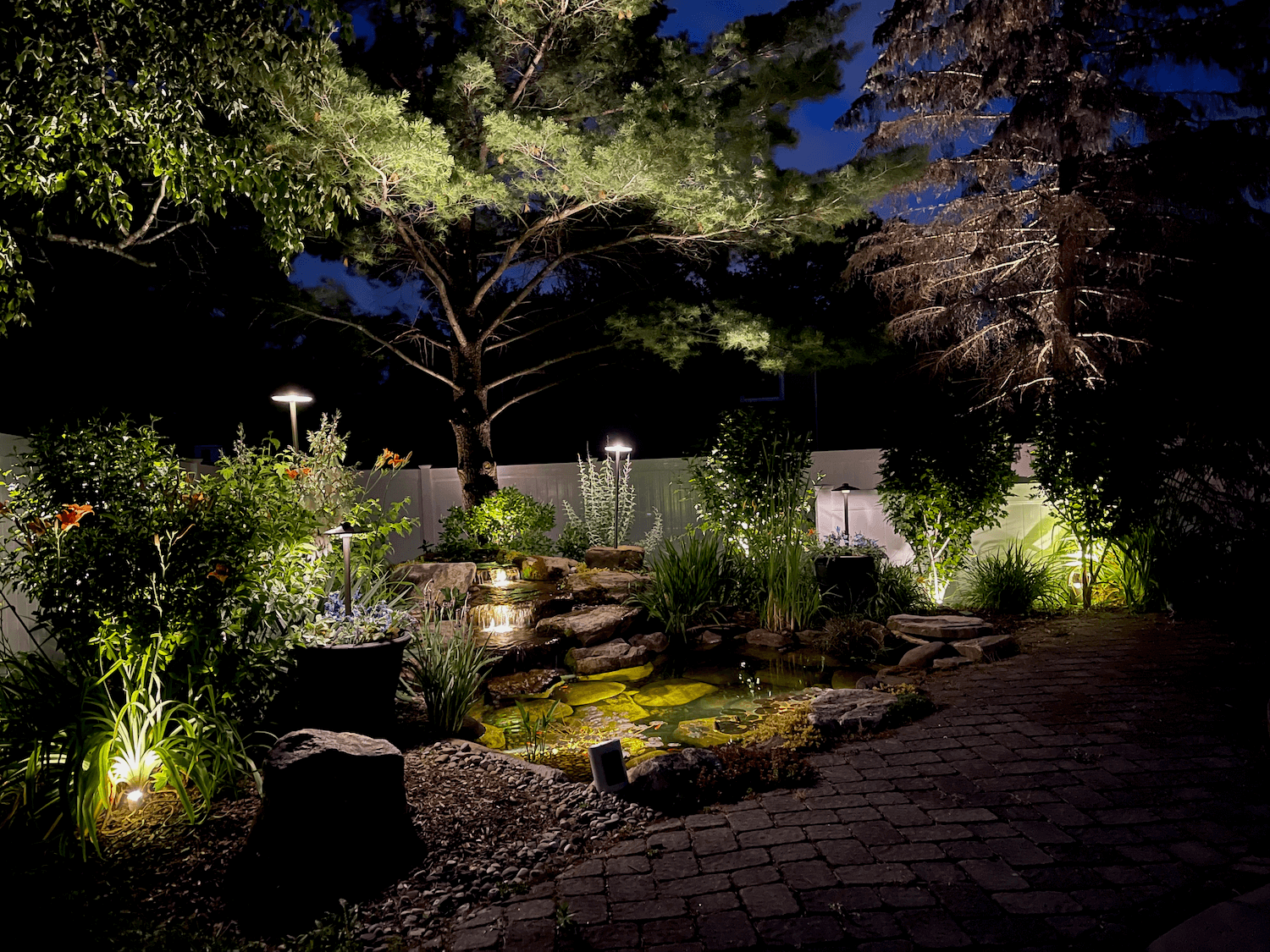 A pond surronded by landscape lighting safe for water